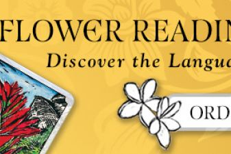 Flower Reading Cards -Review