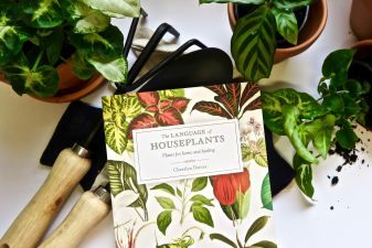 The Language of Houseplants hits Top Ten!
