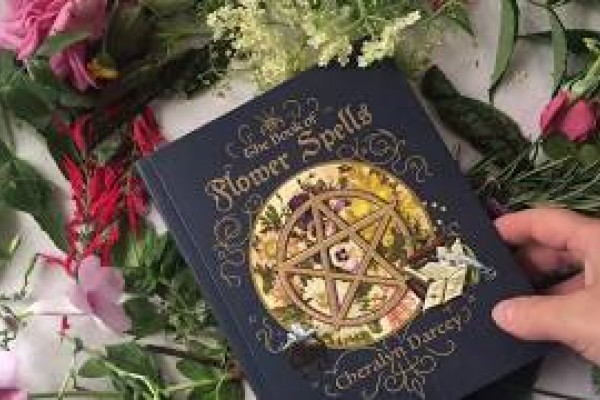 First Reveal of the latest Spellbooks by Cheralyn Darcey