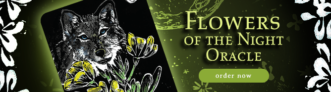 Flower of the Night Banner